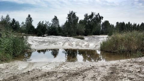 Lipienniki w Dąbrowie Górniczej ( Natura 2000 )