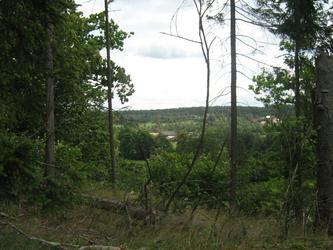 Śladami tornada-Wdecki Park Krajobrazowy. Fot 01