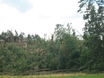 Śladami tornada-Wdecki Park Krajobrazowy.  Fot 04