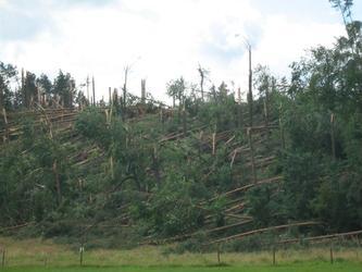 Śladami tornada-Wdecki Park Krajobrazowy- Fot 05