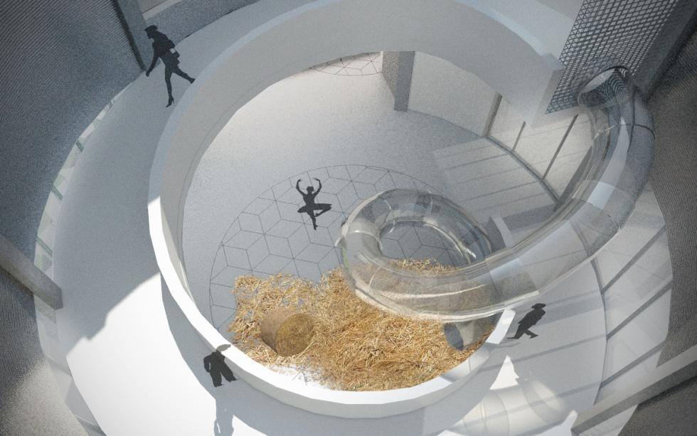 Architektura wnętrz pawilonu wystawowego