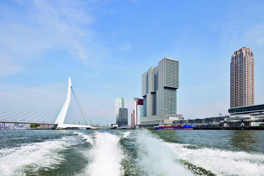 Współczesna architektura Holandii, Rotterdam