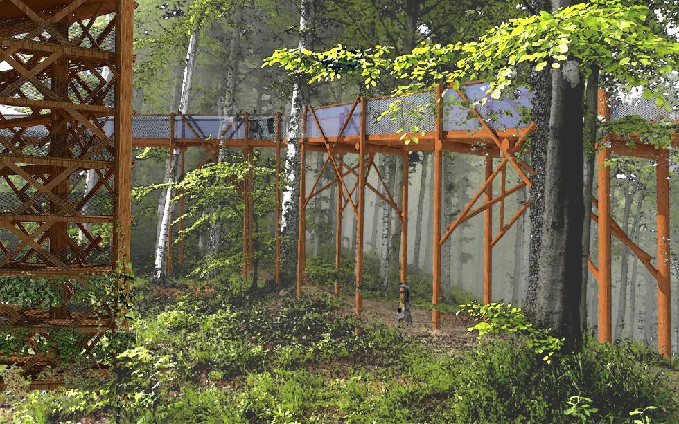 Leśny Ogród Botaniczny w Gdyni