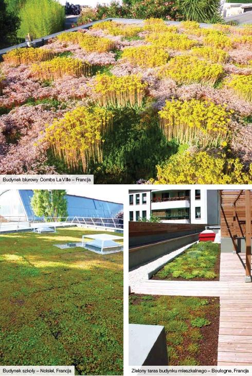 Systemy zielonych dachów Icopal