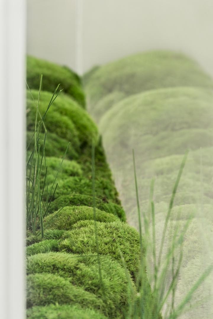 Nadleśnictwo Dretyń od nowa: wnętrza Nadleśnictwa Dretyń projektu LOFFT Architektura