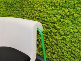 Zielone ściany do każdego wnętrza