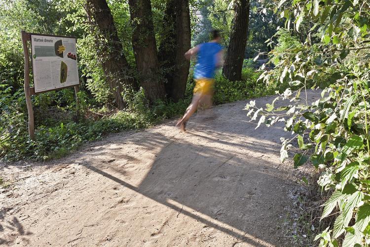 Ścieżka rekreacyjna nad Wisłą