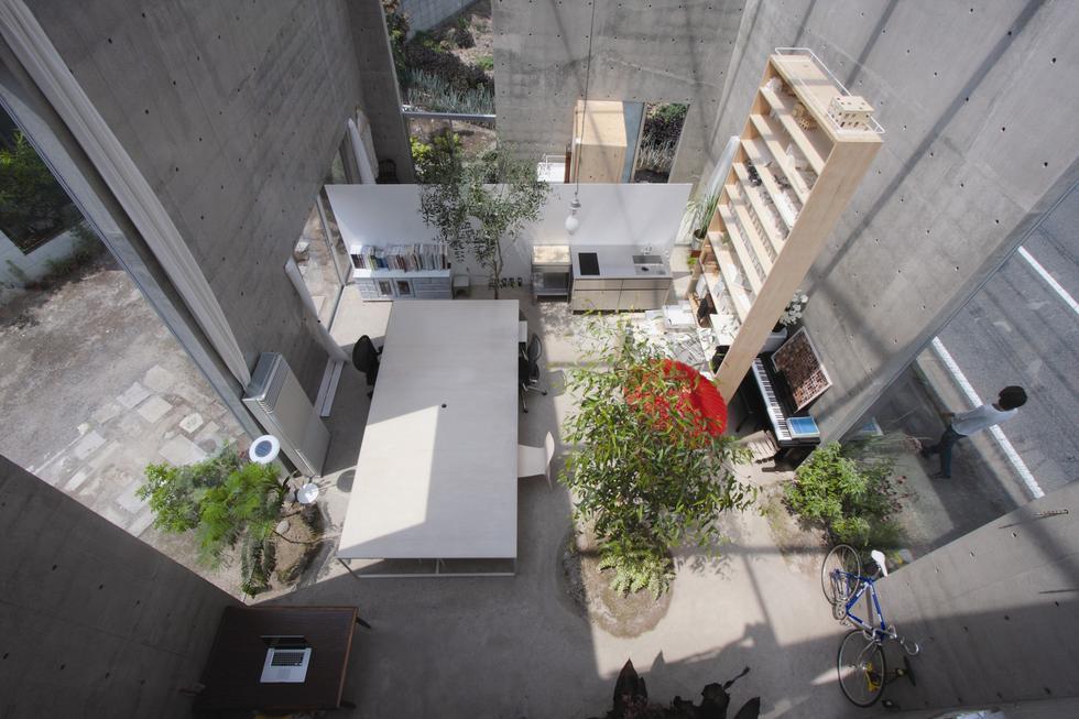 Ikimono Architects