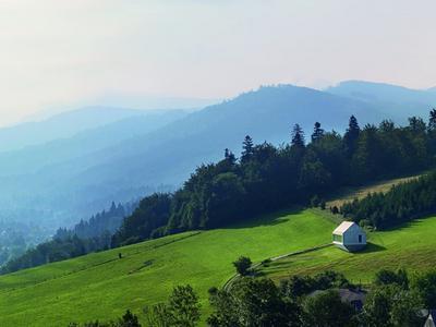 Dom w krajobrazie – o Arce Roberta Koniecznego Piotr Kuczia