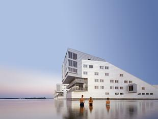 Wykład z cyklu: Mistrzowie Architektury