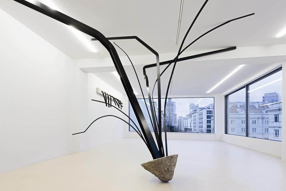 Sosnowska wystawa