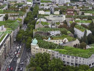 Zielone Miasto. Konferencja