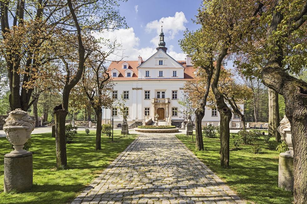Pałac Ciechanowice