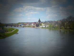 Opracowanie spójnego systemu zieleni miejskiej w Gorzowie Wielkopolskim