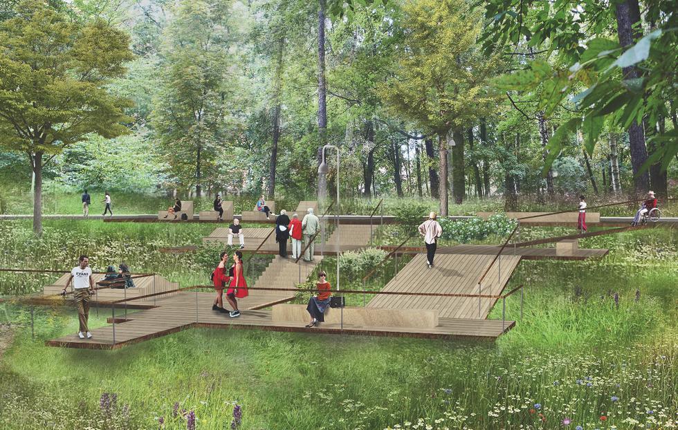 Park w Zielonej Górze, koncepcja