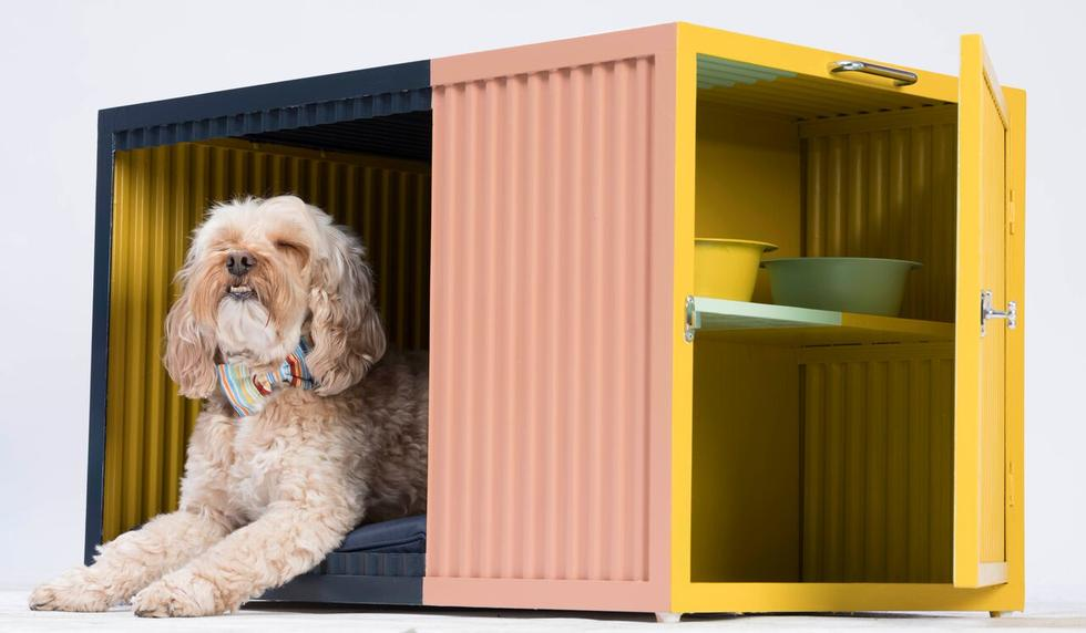 Dom dla psa