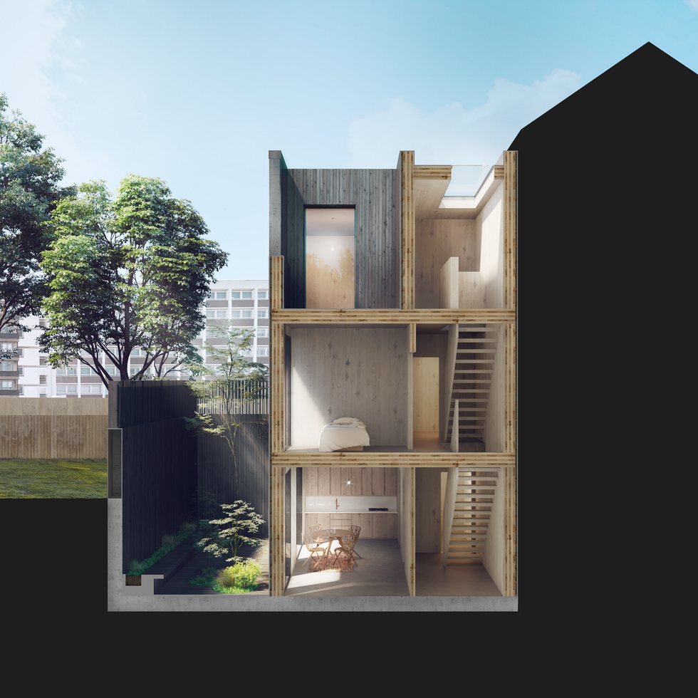 Adjaye Associates for Cube Haus_Section 1_visualisation by Edit.rs (Copy)