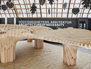 Architektura wyższej potrzeby