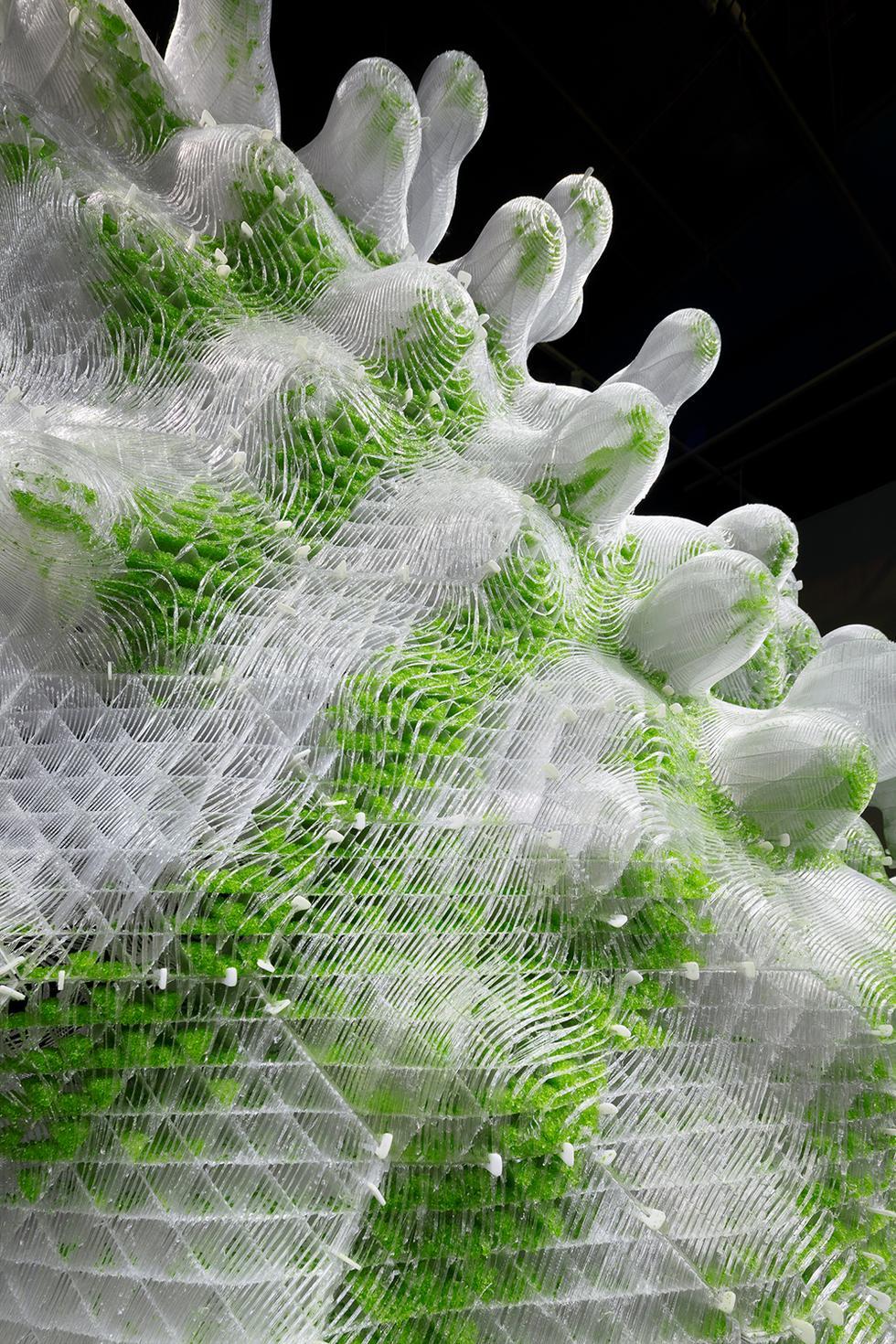 Bioarchitektura 2.0