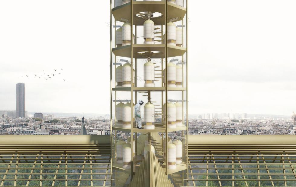 Odbudowa Notre Dame: opinie, pomysły, koncepcje