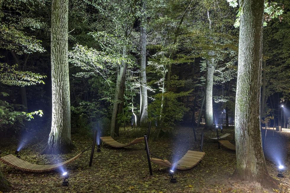 Więcej niż światło – rozmowa ze Sławomirem Cytryniakiem z firmy Spectra Lighting