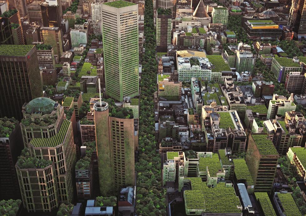 Zielone maszyny przyszłości