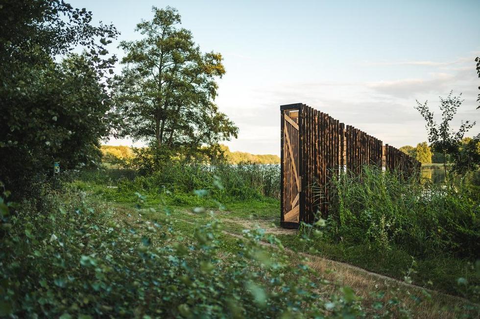Mood for Wood 2020 – wiosenna edycja warsztatów