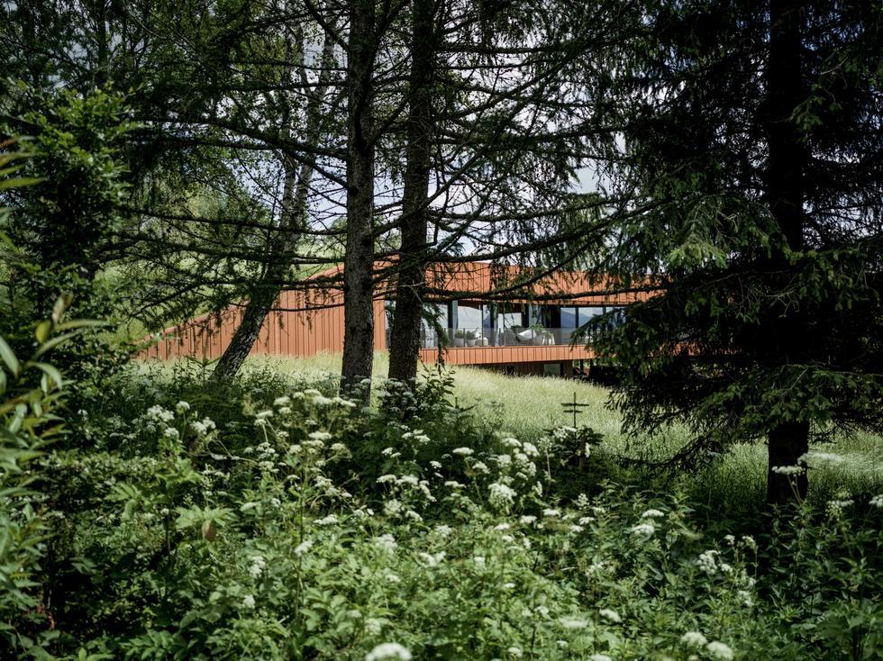 Dom w Bieszczadach projektu medusa group