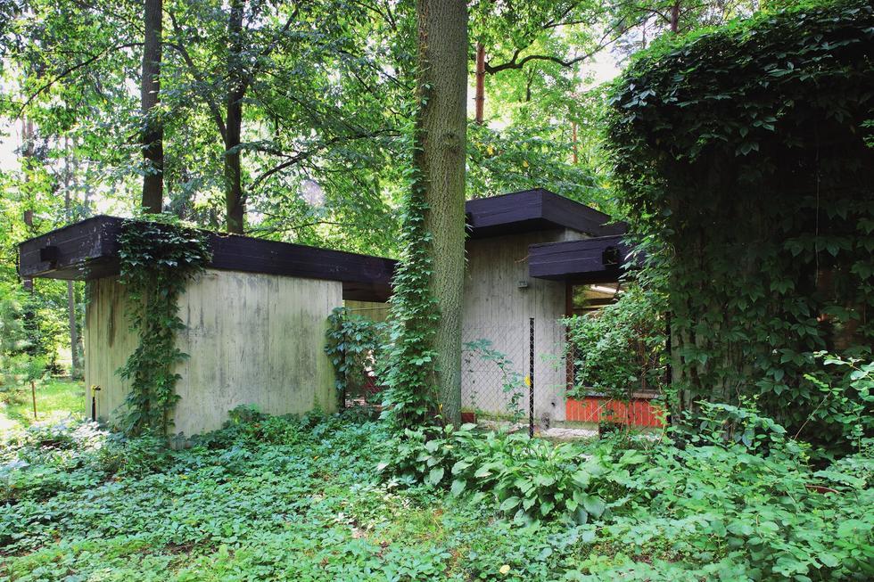 Dom Jana Szpakowicza w Zalesiu Dolnym