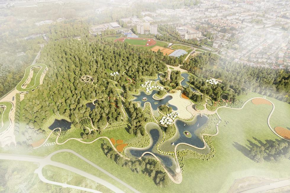 Mokradła Miejskie w Stalowej Woli: pracownia LAX na rzecz renaturalizacji podmokłych terenów w centrum miasta