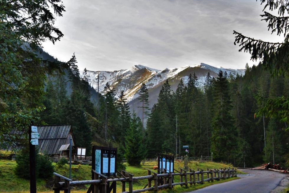 Stan toalet publicznych na górskich szlakach: raport