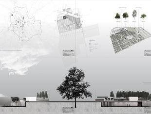 Treemetery as an alternative way of burial
